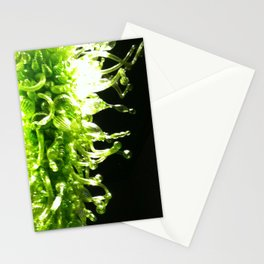 Green Blown Glass Stationery Cards