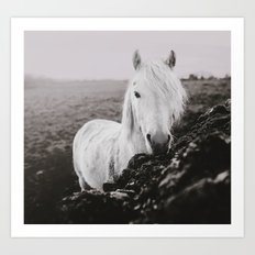Beautiful Grey Art Print
