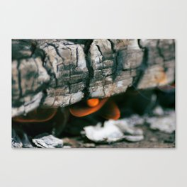 Burns Canvas Print