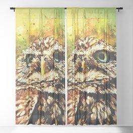 owl portrait 5 wsstd Sheer Curtain