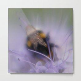 bumblebee Metal Print