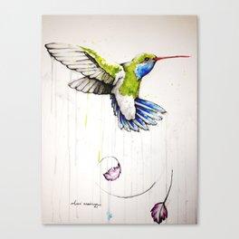 29837 Canvas Print