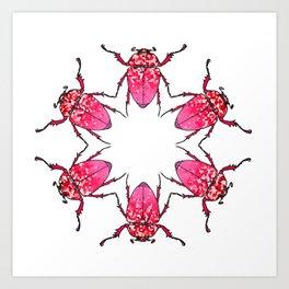 Pink beetles Art Print