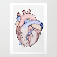 anatomical heart Art Prints featuring Anatomical Heart by JodiYoung