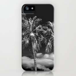 Palm Trees in Black and White on Cabrillo Beach iPhone Case