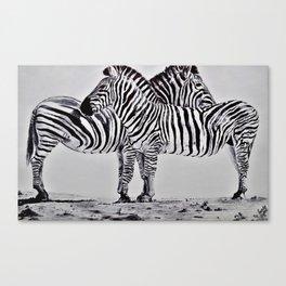 African Zebras Canvas Print