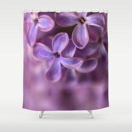 Fresh Lilac flowers Shower Curtain