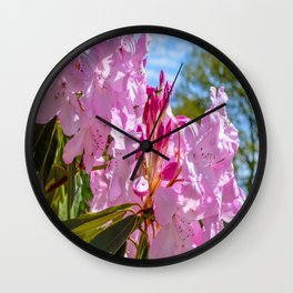 The Lost Gardens of Heligan - Pink Rhododendron Wall Clock