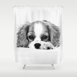 Angelic Cavalier Shower Curtain