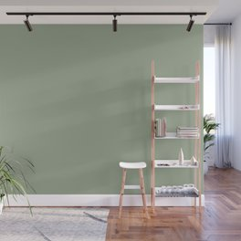 Best Seller Muted Green Single Solid Color Pairs Behr Roof Top Garden S390-4 Wall Mural