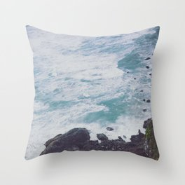 Blue Ocean - Seals on Rocks Throw Pillow
