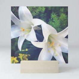 White Lilies Mini Art Print