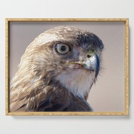 Watercolor Bird Redtail Juvenile Hawk 06, Flashing the Look! Serving Tray
