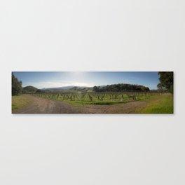 Napa View Canvas Print