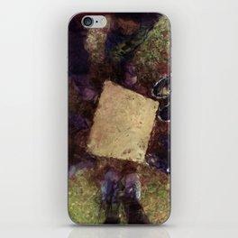 Home Base iPhone Skin