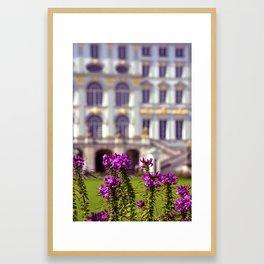 Flowers of castle Nympfenburg Framed Art Print