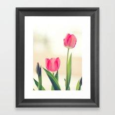 Love Tulips. Framed Art Print