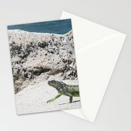 Key West Iguana Stationery Cards