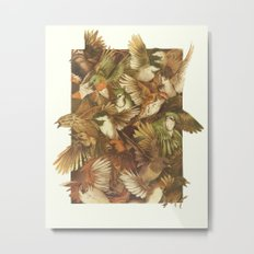Red-Throated, Black-capped, Spotted, Barred Metal Print