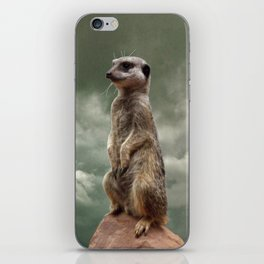 King of the world.... iPhone Skin