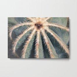 The Cactus Metal Print
