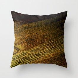 Wood DPGPA151014b-14 Throw Pillow