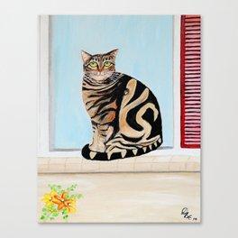 Cat sitting on window sill Canvas Print
