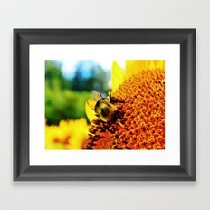 Feasting Bee Framed Art Print