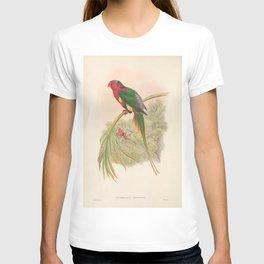 014 Papuan Lorikeet Papuan Lory charmosyna papuensis4 T-shirt