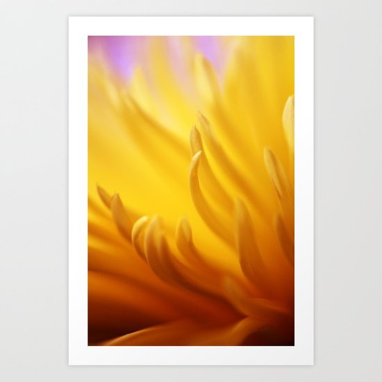 Flaming Petals Art Print