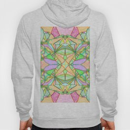 217 - Abstract distressed colourful design Hoody