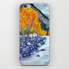 Along the lake.. iPhone & iPod Skin