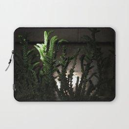 Nighttime in the Garden, 6 Laptop Sleeve