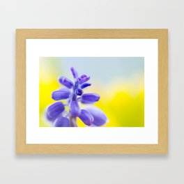 Cut through the Garden VI Framed Art Print