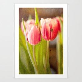 The Tulip and the Ladybug Art Print