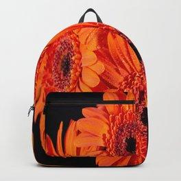 Orange Gerber Daisies Backpack