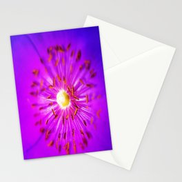 Flower Bright Stationery Cards