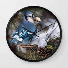 Christmas Blue Jay Wall Clock