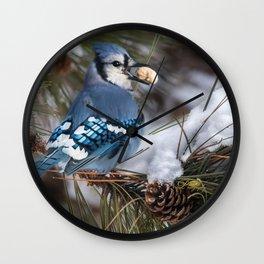 Christmas Blue Jay Wall Clock