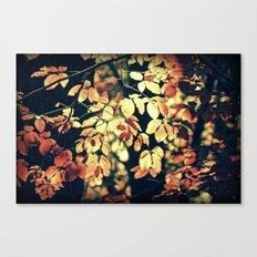 Autumnally Canvas Print
