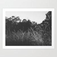 Outback memories Art Print