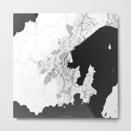Wellington Map Gray Metal Print