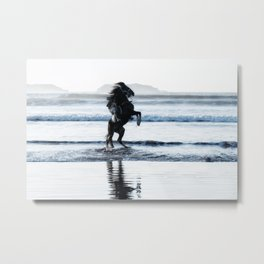 Action - Horse rearing at the beach. Metal Print
