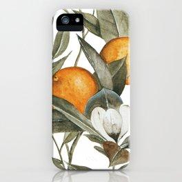 Orange Blossom iPhone Case