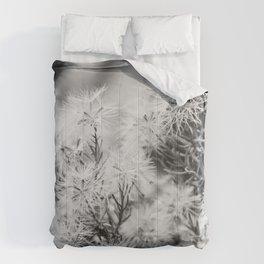 Black and White Desert Broom Comforters