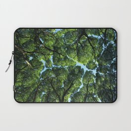 Crack willow Laptop Sleeve