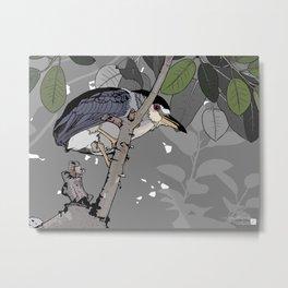 Black-crowned Night-Heron Metal Print
