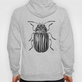 Beetle 06 Hoody
