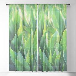 Green leaves so beautiful. Sheer Curtain
