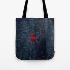 Color in the Dreary Tote Bag